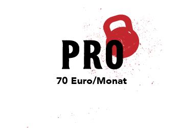 PRO_icon-03 (2)